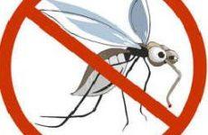 Защищаем свой дом от комаров