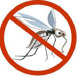 Защищаем дом от комаров