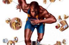 Профилактика травм и заболеваний у профессиональных спортсменов