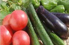 Как избавиться от нитратов в продуктах? Ответим!