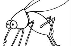 Чтобы не кусали комары и мошки