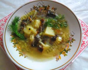Щи из квашеной капусты с чёрными древесными грибами