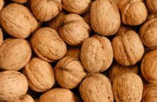 Чем полезен грецкий орех? Ответим!